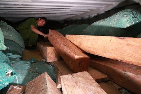 Bat 170 long go quy hiem tren xe Container cho san - Anh 1