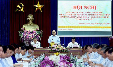 Thu tuong neu nhiem vu ve 'nuoc va rung' cho Tay Nguyen - Anh 2