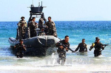 Philippines, Malaysia, Indonesia tang cuong hop tac an ninh hai gioi - Anh 1