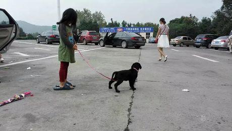 Ong bo cung con gai 5 tuoi dap xe vong quanh Trung Quoc - Anh 4