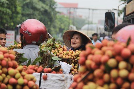 Vietnam Airlines tiep tuc ho tro vai thieu xuat khau - Anh 1