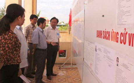 Bau cu o Ha Tinh: Thanh cong hon mong doi - Anh 1