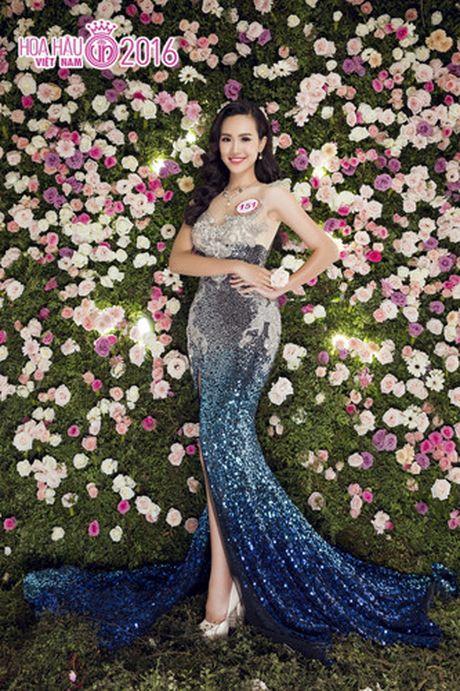Nhung ung vien sang gia cho ngoi vi Hoa hau Viet Nam 2016 - Anh 18