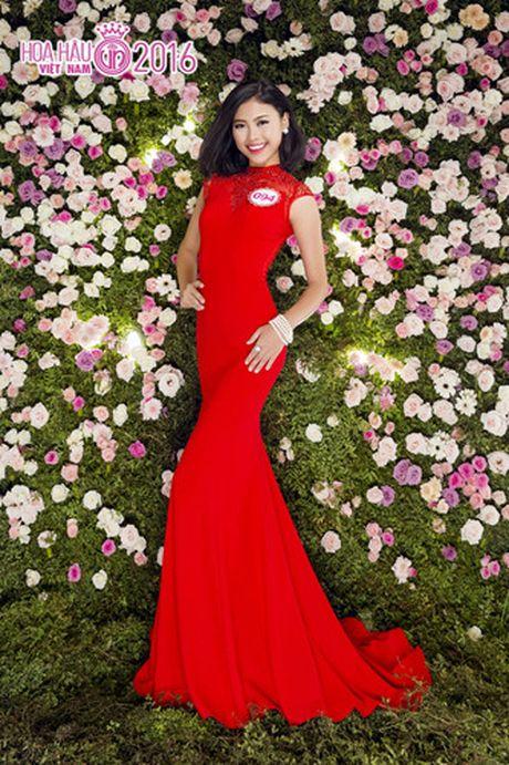 Nhung ung vien sang gia cho ngoi vi Hoa hau Viet Nam 2016 - Anh 8