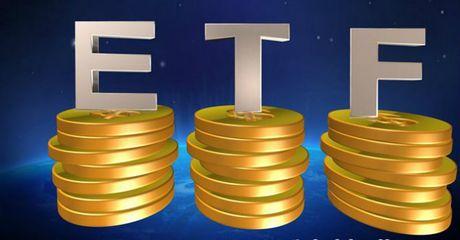 Market Vectors se mua 4,2 trieu co phieu VNM va 7,3 trieu co phieu VCG - Anh 1
