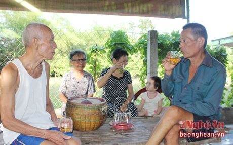 Choang voi vung dat co giong noi 'la nhat Viet Nam' - Anh 1