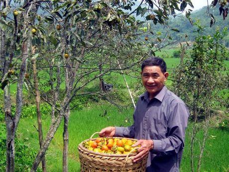 Hong khong hat Bac Kan: Dac san vung son cuoc - Anh 2