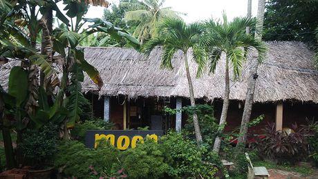 Vu tranh chap hop dong thue dat Moon Resort (Phu Quoc, Kien Giang): Cho thue dien tich mot dang, doi mot neo - Anh 1
