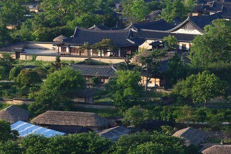 Doc dao van hoa Han Quoc qua cac lang lich su: Hahoe va Yangdong - Anh 1
