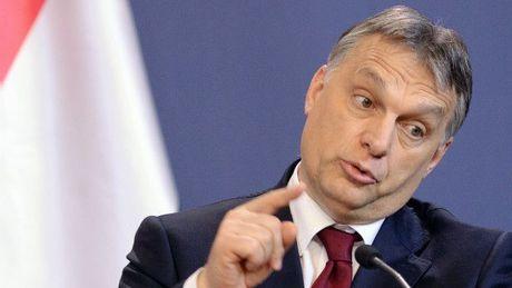 Hungary se trung cau dan y ve don nguoi ti nan - Anh 2