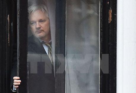 Wikileaks huy dot cong bo thong tin nhay cam vi lo ngai an ninh - Anh 1