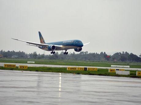Hai may bay Vietnam Airlines bi chim va vao dong co khi ha canh - Anh 1