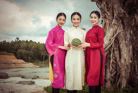 Top 5 Hoa hau Viet Nam 2016 dep 'nghieng thanh' voi ao dai - Anh 8