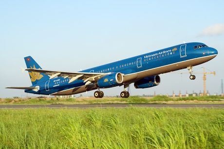 May bay Vietnam Airlines phai tam dung bay vi chim va vao dong co - Anh 1