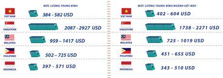 Luong nganh Det may Viet Nam tang 12% so voi nam 2015 - Anh 1