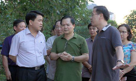Chu tich Ha Noi: Ho Tay khong con ca chet tu toi qua - Anh 1