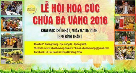 Le hoi Hoa Cuc – Le tri an net dep van hoa dac sac - Anh 3