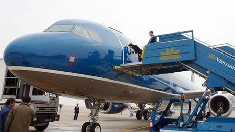 Hai may bay Vietnam Airlines bi chim va vao dong co - Anh 1