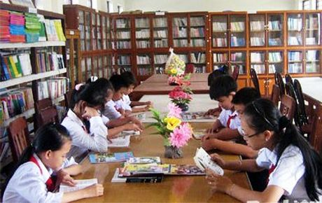 Cap kinh phi cho kho sach luan chuyen cua thu vien dia phuong - Anh 1