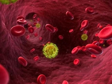 Nguoi dau tien co the duoc chua khoi HIV - Anh 1