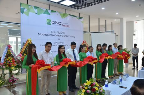 Ho tro tron goi khong gian lam viec chung cho startup trong 6 thang - Anh 1