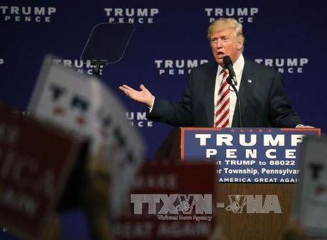 Ty phu Trump phan bac nghi an tron thue - Anh 1
