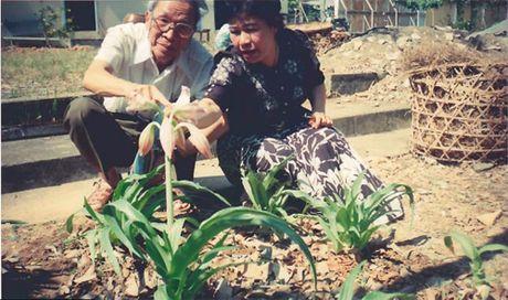 """Tien si - Duoc si Nguyen Thi Ngoc Tram: Trinh nu hoang cung da """"am anh"""" toi - Anh 2"""