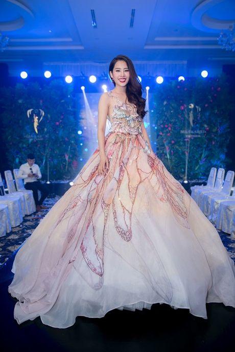 Ngam trang phuc dan toc, trang phuc da hoi cua Nam Em tai Miss Earth - Anh 5
