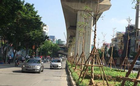 Chu tich nuoc: Som muon Trinh Xuan Thanh cung bi bat - Anh 3