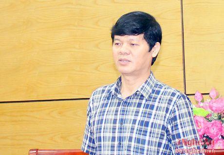 Nghe An: Day manh phat trien ha tang thuong mai - Anh 2
