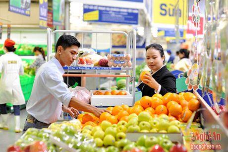 Nghe An: Day manh phat trien ha tang thuong mai - Anh 3