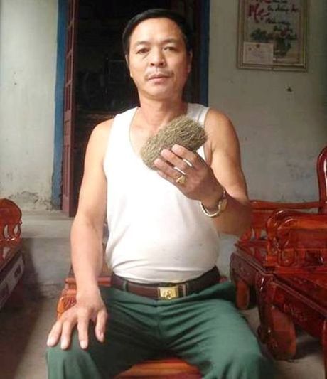 Nghe An: 'Cat lon' tien ty duoc phat hien trong bung lon - Anh 1
