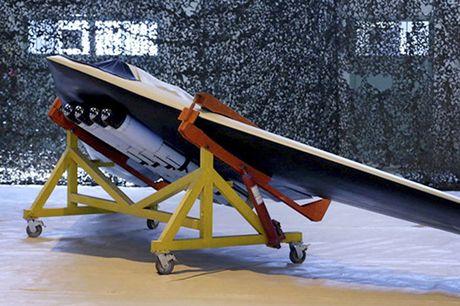 Iran trinh lang UAV nem bom, nghi 'nhai' cua My - Anh 2