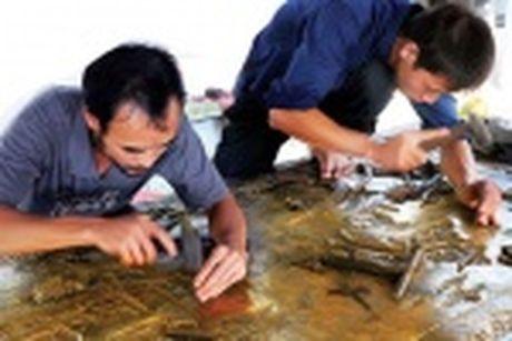 Ha Noi huong dan doanh nghiep ung pho va phuc hoi sau rui ro thien tai - Anh 3