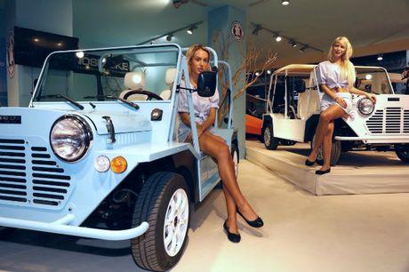 Me man dan chan dai ben xe moi tai 2016 Paris Motor Show - Anh 10