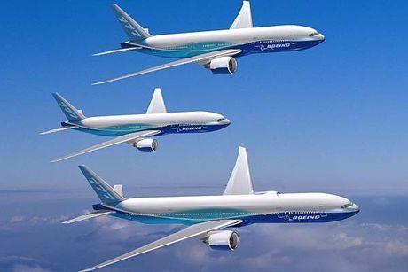 'Mo' dong may bay cua Vietnam Airlines bi chim troi lam hong - Anh 10