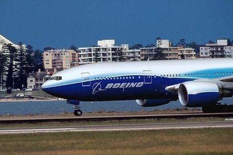 'Mo' dong may bay cua Vietnam Airlines bi chim troi lam hong - Anh 11