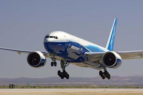'Mo' dong may bay cua Vietnam Airlines bi chim troi lam hong - Anh 12