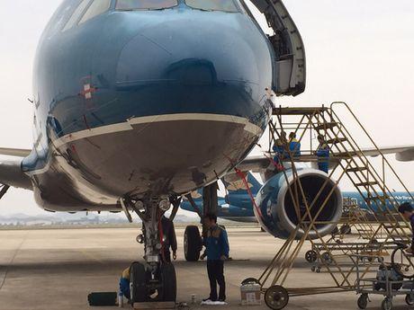 'Mo' dong may bay cua Vietnam Airlines bi chim troi lam hong - Anh 1