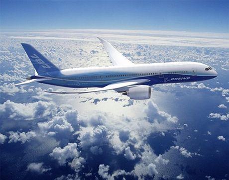 'Mo' dong may bay cua Vietnam Airlines bi chim troi lam hong - Anh 4