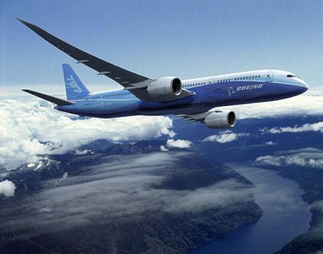 'Mo' dong may bay cua Vietnam Airlines bi chim troi lam hong - Anh 6