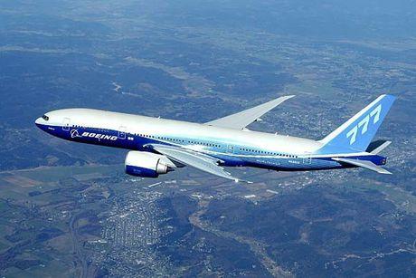'Mo' dong may bay cua Vietnam Airlines bi chim troi lam hong - Anh 8
