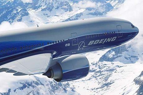 'Mo' dong may bay cua Vietnam Airlines bi chim troi lam hong - Anh 9