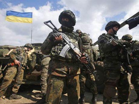 Ukraine muon tro thanh doi tac 'dac biet' kieu NATO cua My - Anh 1