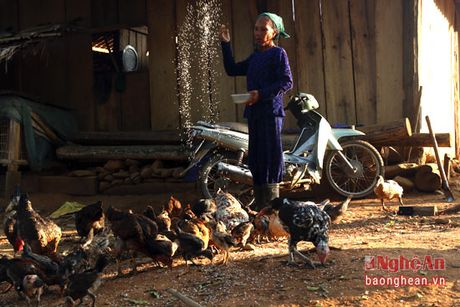Cuu chien binh nguoi Thai lam giau tren dinh Phia Phong - Anh 4