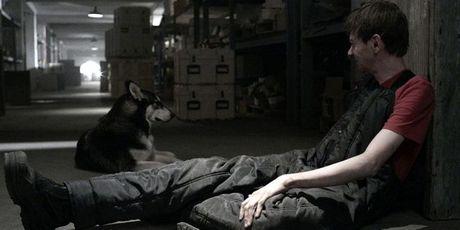 'Z Nation' tuyen bo 'The Walking Dead' tuoi…? - Anh 2
