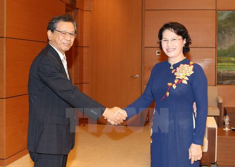 Chu tich Quoc hoi Nguyen Thi Kim Ngan tiep Dai su Nhat Ban - Anh 1