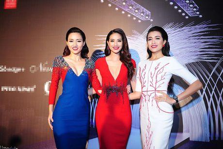 Nga re khac nhau cua top 3 HH Hoan vu VN 2015 - Anh 5