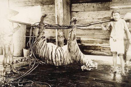 Da Lat thap nien 1920 trong anh cua Raymond Chagneau (2) - Anh 6