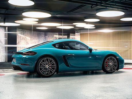 Porsche trieu hoi 100 xe Macan 2017 'dinh loi' - Anh 3